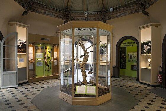 Bâtiment - Muséum des Sciences Naturelles